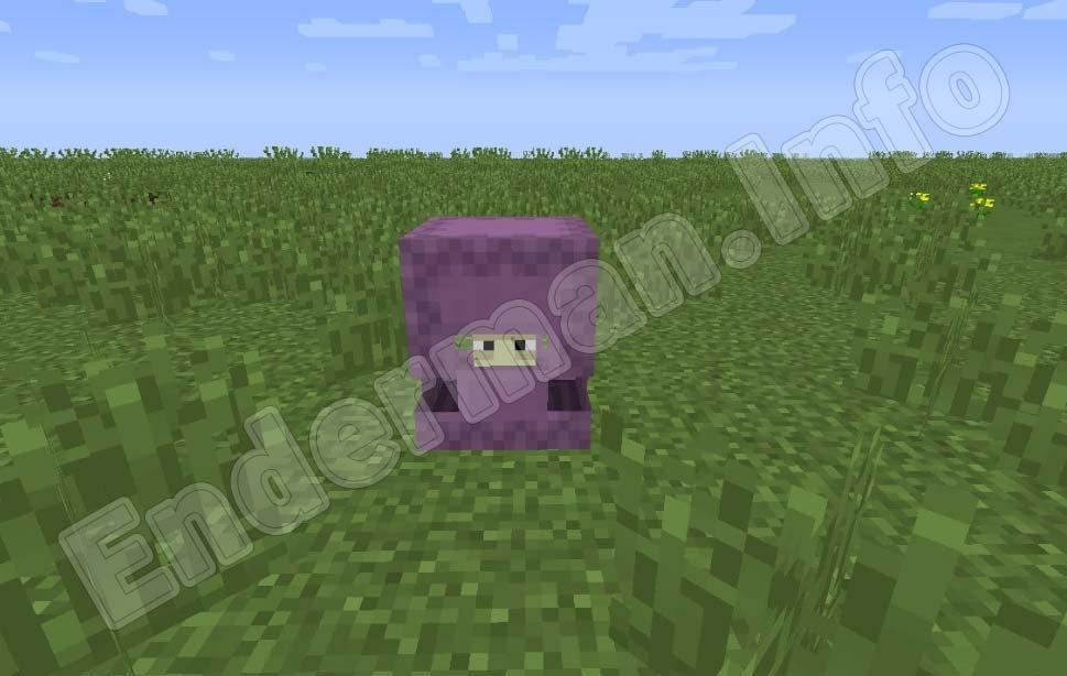 Minecraft PE Шалкеры